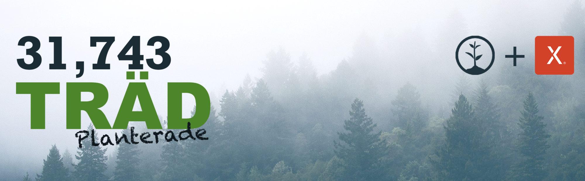 ett-träd-plantad-banner
